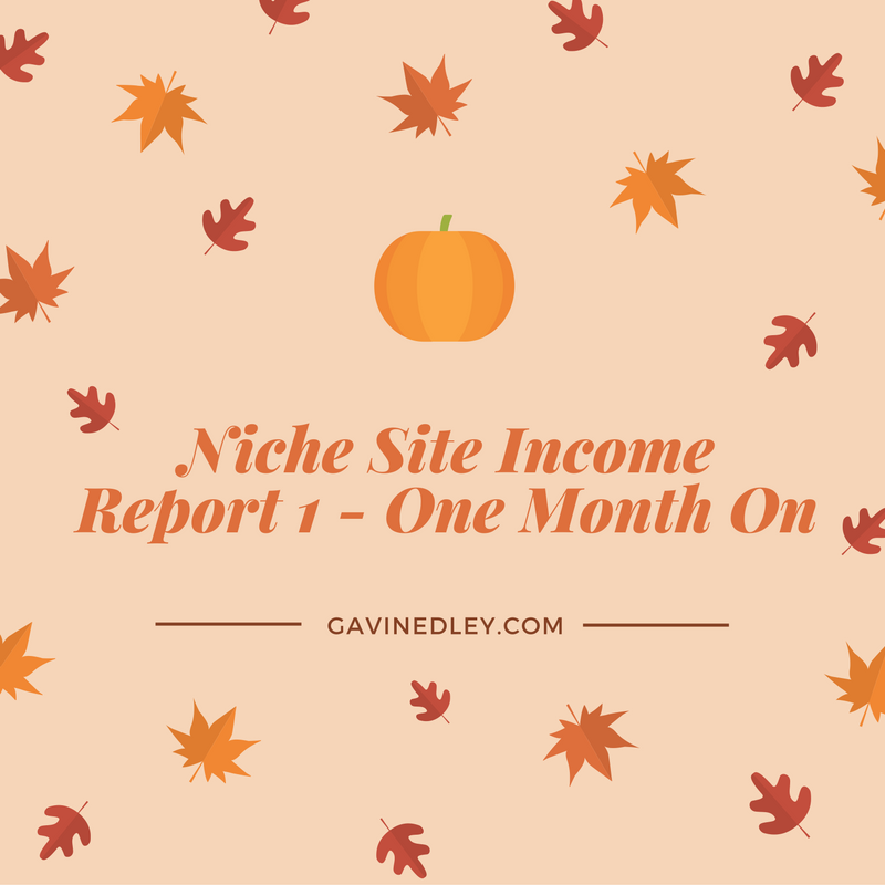 niche site progress report